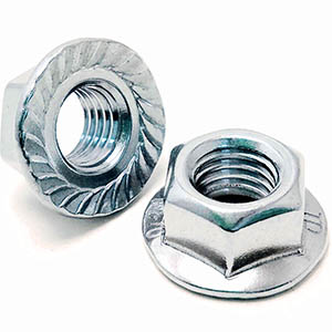A2 Stainless Serrated Flange Nuts